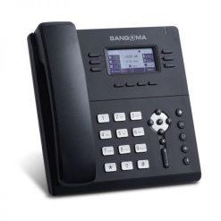 Điện thoại IP Sangoma S406